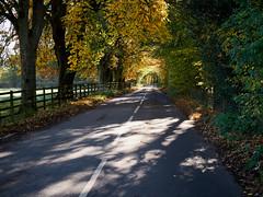 Autumn in Rosedale
