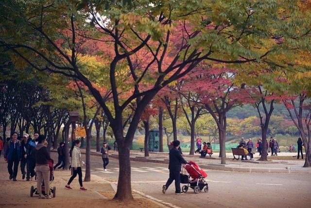 1b. Incheon Grand Park