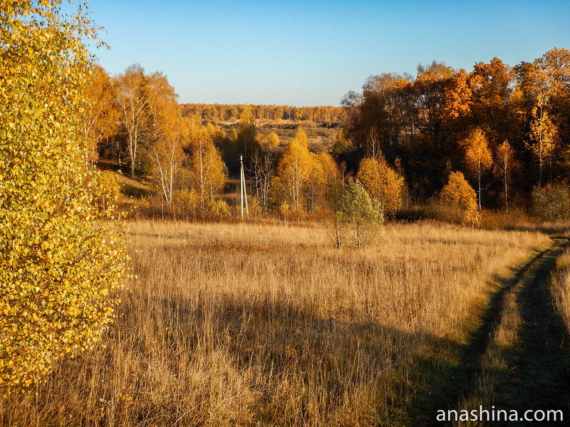 Перелесок, Протасово, Московская область