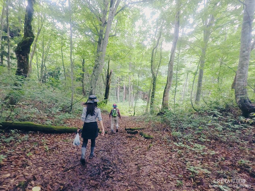 20181018 | 行走在日本東北 | 治癒之森的一堂生命課程,健行在自然首都的福島只見町 13.jpg