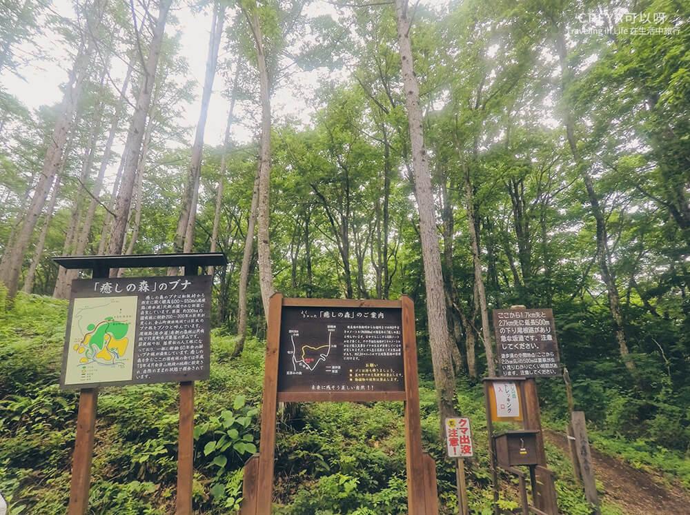 20181018   行走在日本東北   治癒之森的一堂生命課程,健行在自然首都的福島只見町 07.jpg