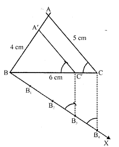 RD Sharma Class 10 Solutions Chapter 9 Constructions Ex 9.2 -4
