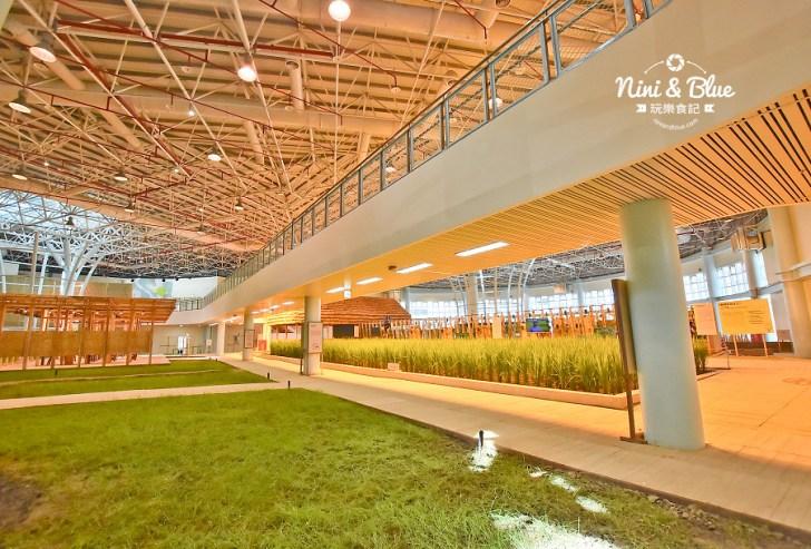 45648257681 826b2f6333 b - 台中花博外埔園區,將水稻農田搬到展覽館內,摩西分海超好拍