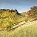 Lathkill Autumn