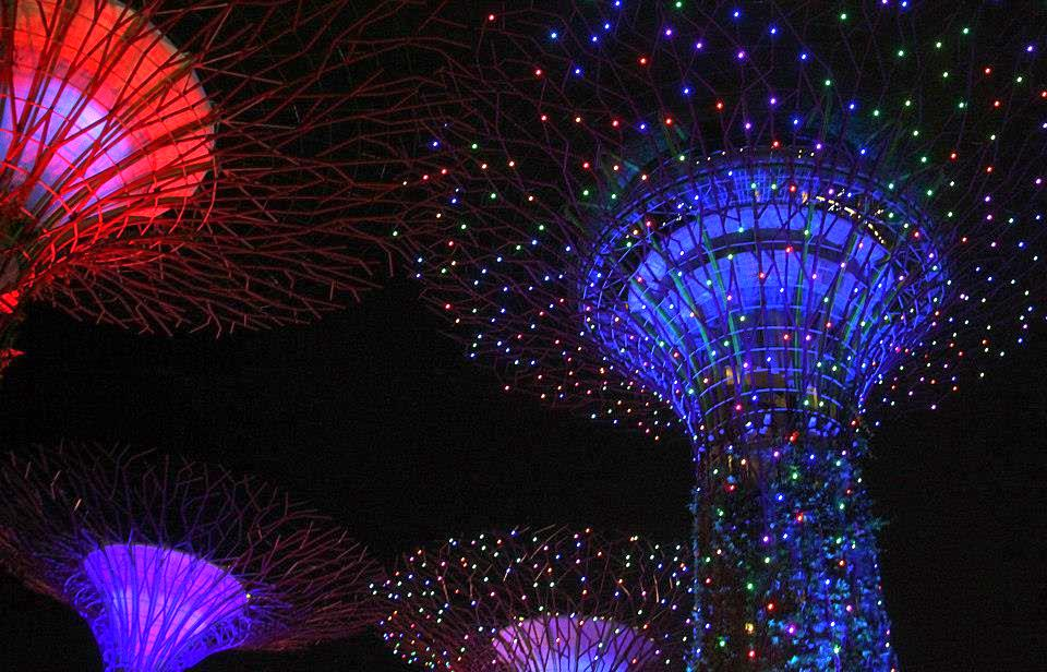 The stunning Supertrees Grove at Gardens by the Bay