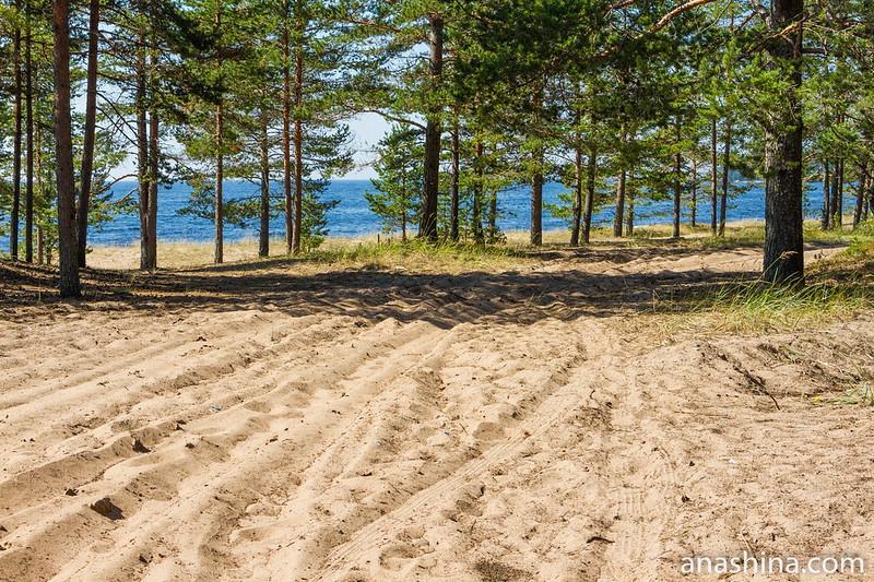 Ладожское озеро, Восточное Приладожье