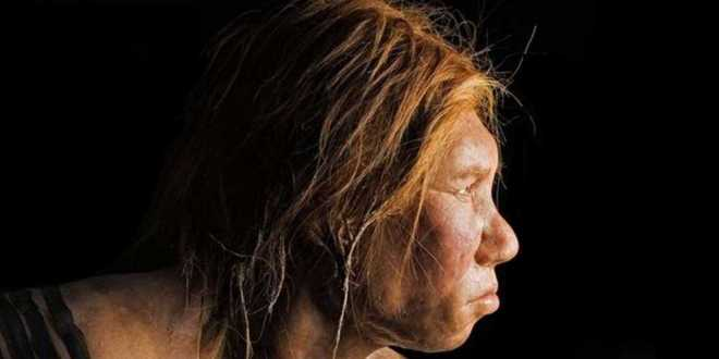 homo--sapiens-contre-les-maladies