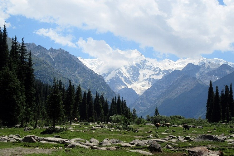 Boris Yeltsin Peak, 10 Amazing Things to do in Kyrgyzstan, Survive Travel (20)
