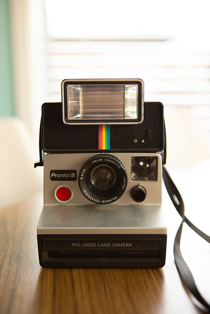 Polaroid Land Camera Test | Nicole Hastings Photography