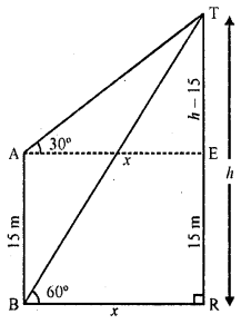 RD Sharma Class 10 Solutions Chapter 12 Heights and Distances Ex 12.1 - 17