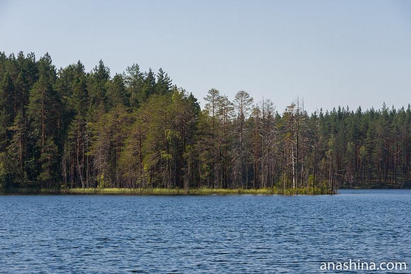 Болотистый мыс, Озеро Саариярви
