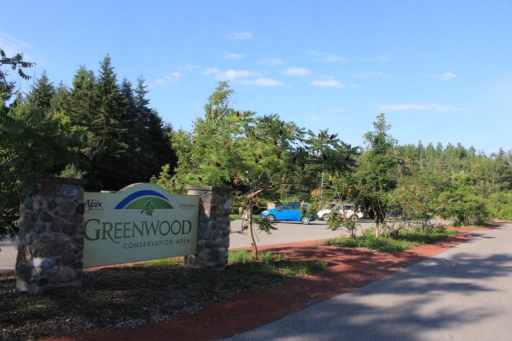 Greenwood CA