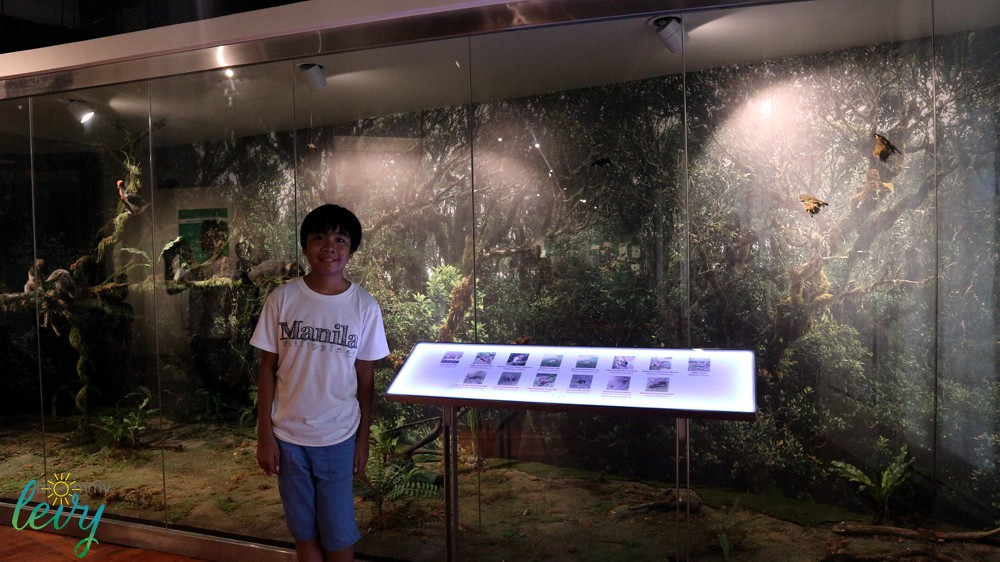 National Museum 19