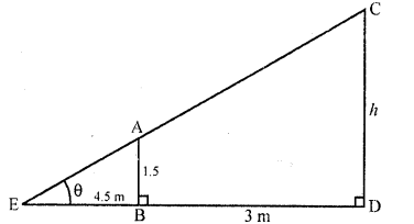 RD Sharma Class 10 Solutions Chapter 12 Heights and Distances MCQS - 20