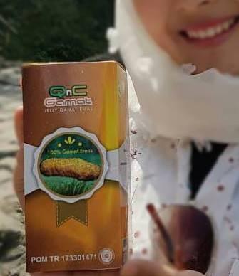 qnc jelly gamat untuk kesehatan dan kecantikan kulit