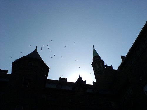 City Hall, Copenhagen 4