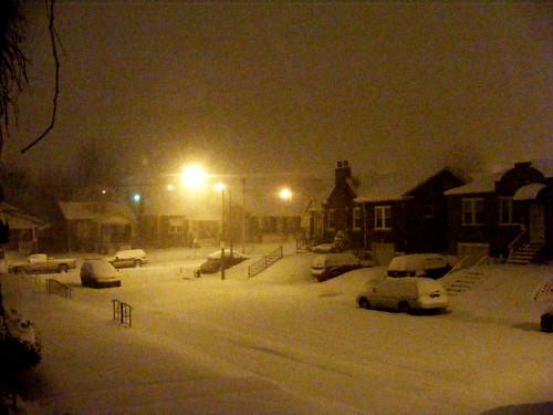 winter wonderland on my street