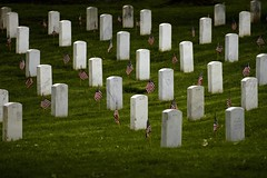 'Flags-In' at Arlington National Cemetery for ...