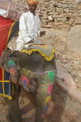 Amber Fort 1-17 琥珀堡騎大象