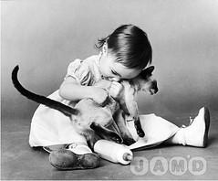 kitten-child