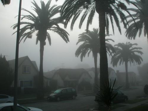 My foggy street - southeast
