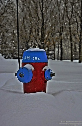 day 45 Hydrant 0-315-184
