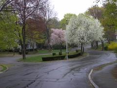Wakefield Park