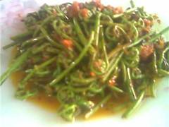 Fried midin with sambal