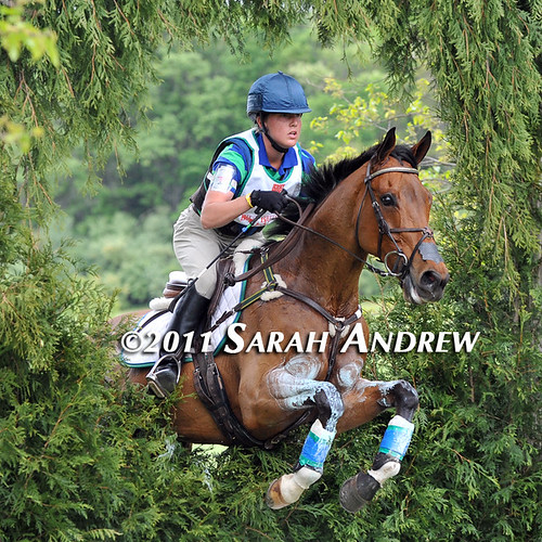 Ashley Adams and Vaunted- through the Keyhole at Jersey Fresh. Vaunted is a Thoroughbred by Two Punch- he raced twice.