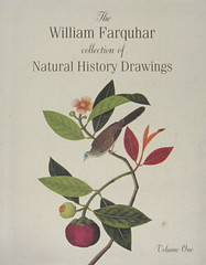 The William Farquhar Collection of Natural History Drawings