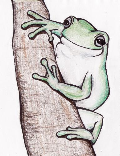 me, you, frog, colored pencils