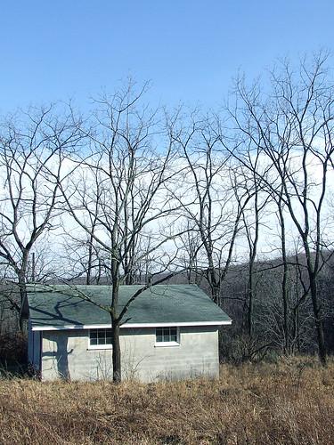 Black walnut trees ring the garage