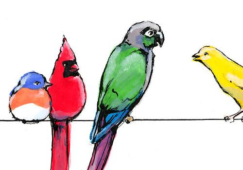 Prettybirds detail.