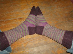 Carnivale Du Printemps Socks - Complete (Side view)