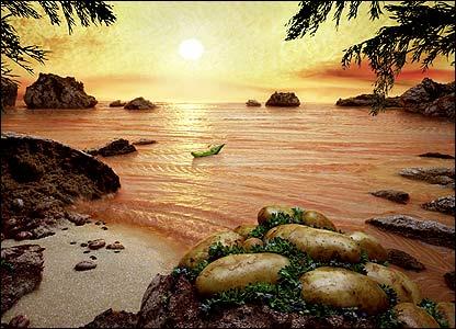 CW_Foodscapes_salmon_416x300.jpg
