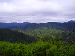 The mountains around Merlin, OR