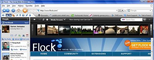flock screenshot 1