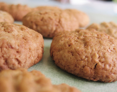 Wheat Bran Biscuits for Your Digestion