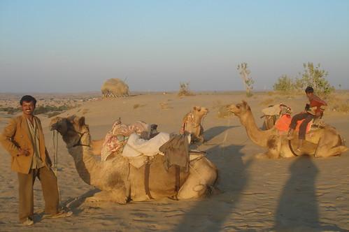 騎駱駝1-35