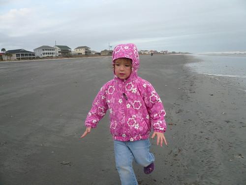 Moo running on the beach