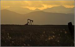 Weld County Oil & Gas, Larimer