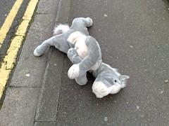 Alas, poor donkey...