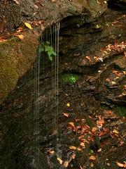 Ada-Hi Falls (sorta)