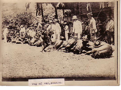 Bontoc Tug-of-War, Philippines 1911  Philippine Buhay Pinoy Noon old pictures photograph black and white Philippines  Filipino Pilipino  people photos life Philippinen indigenous tribe game