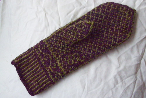 Icewine mitts - palm