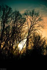 SunDawn-3748.jpg