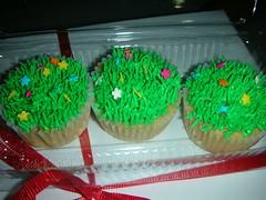 Garden of Cupcakes