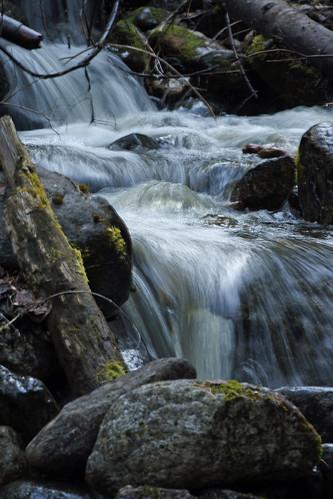 Nancy Creek on Bisbee Mt.