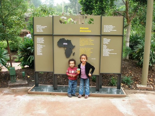 Entering the Gorilla Reserve!