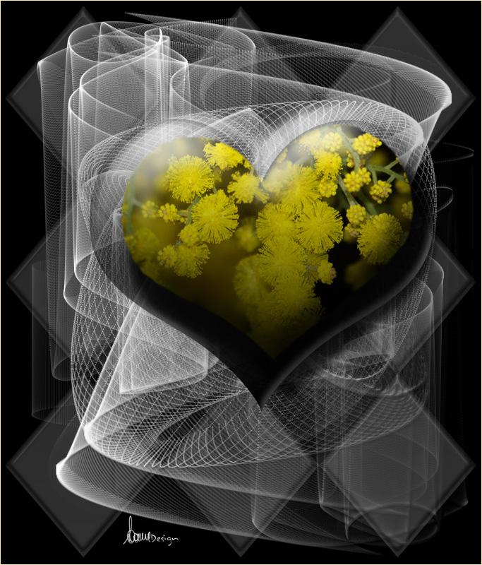Cuore di mimosa....
